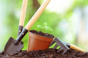 0413_Gardening